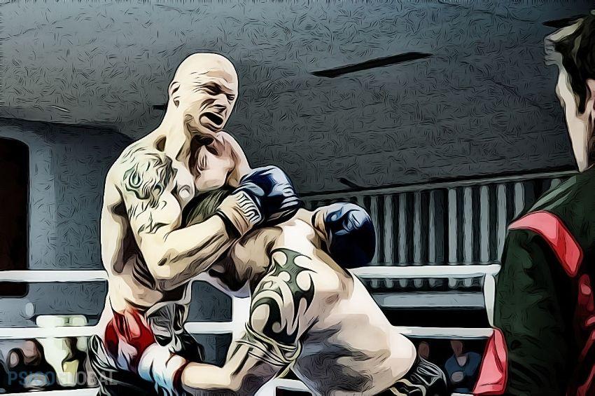 agresividad lucha dib