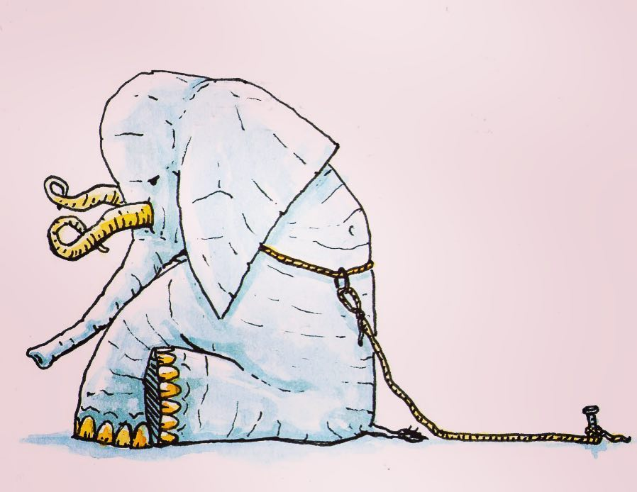 Psicología indefension aprendida elefante