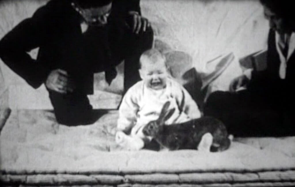 pequeno-albert-1920